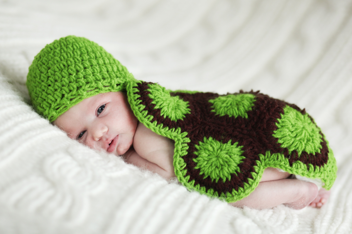 babyborn-schildkroete